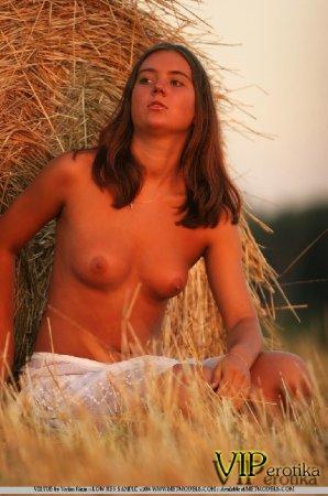 Красавица на сеновале