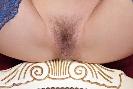 Голенькая волосатая киска