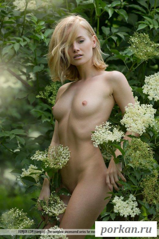 Стройная девушка нежно позирует в эротике у зелени